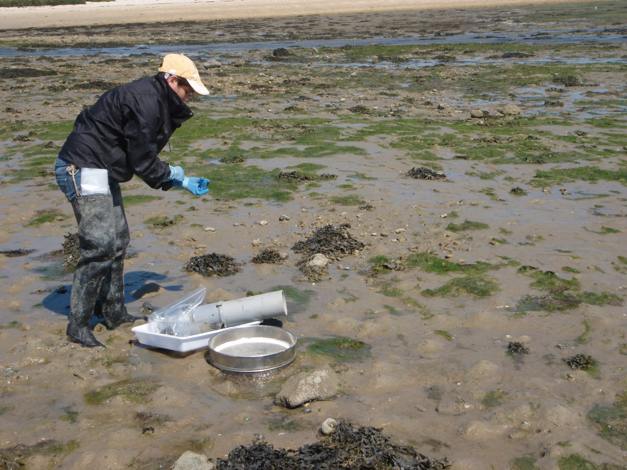 Sampling during low tide in France