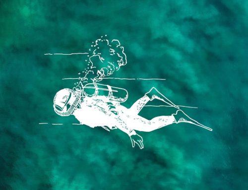 Découverte du milieu marin