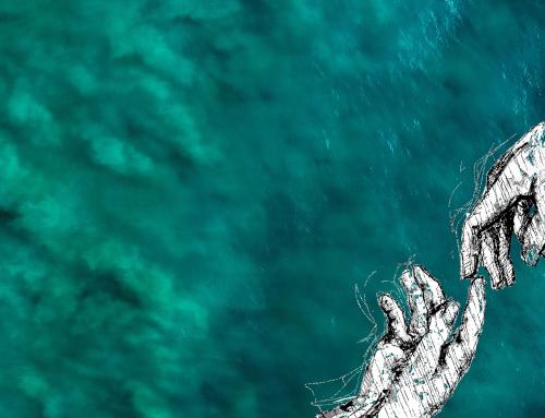Pourquoi et comment protéger nos océans ?