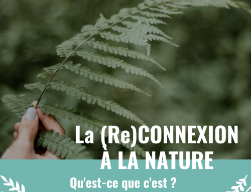 Qu'est-ce que la connexion à la nature ?  Quels en sont les bénéfices ?